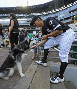 Saladino and Dog - Jonathan Daniel/Getty Images